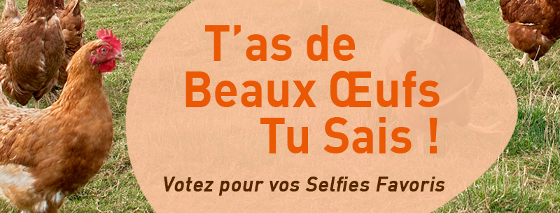 visuel-oeuf-pour-blog